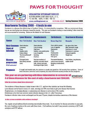 WVS newsletter front